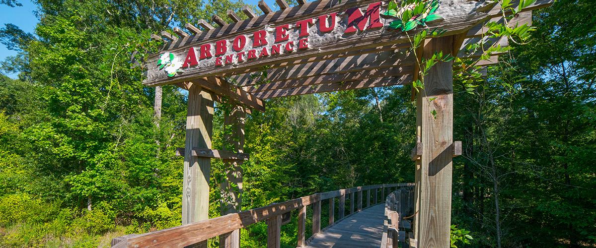Arboretum gate